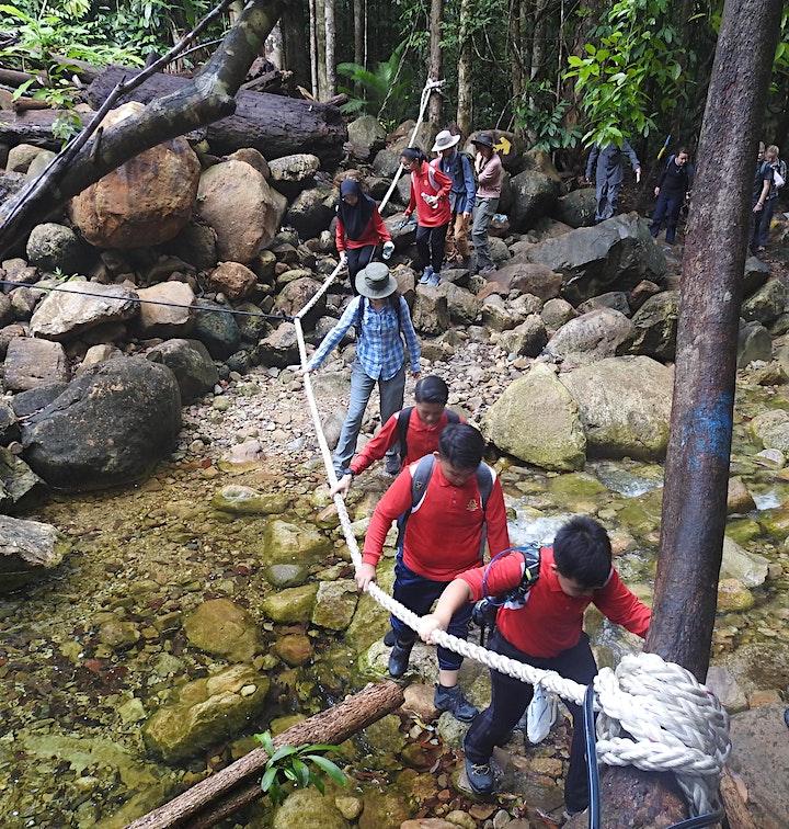 """Orchid Conservation Adventures in Sarawak"" - Online Talk image"