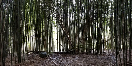 Bamboo Encounter Monthly Meeting tickets