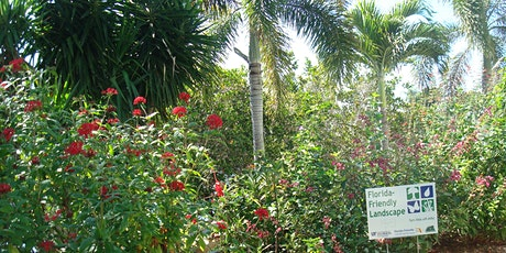 Florida Friendly Landscaping Programs  (Virtual) tickets