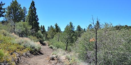 Maple Hills Trail Work Day tickets