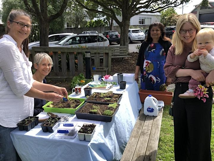 Edible Gardening in Grey Lynn image