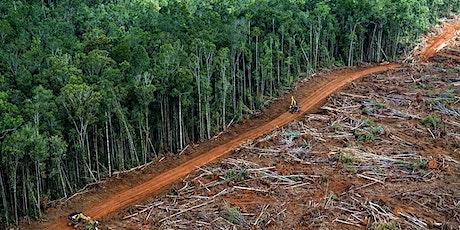 Proiezione docufilm Deforestazione Made In Italy biglietti