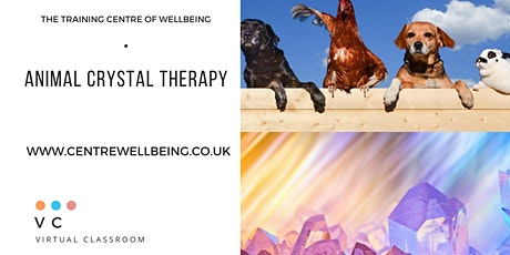 Animal Crystal Therapy Practitioner tickets