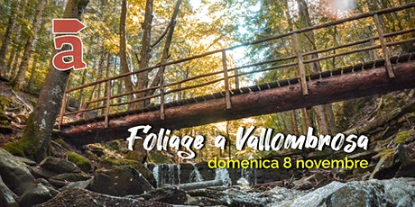 Foliage a Vallombrosa tickets
