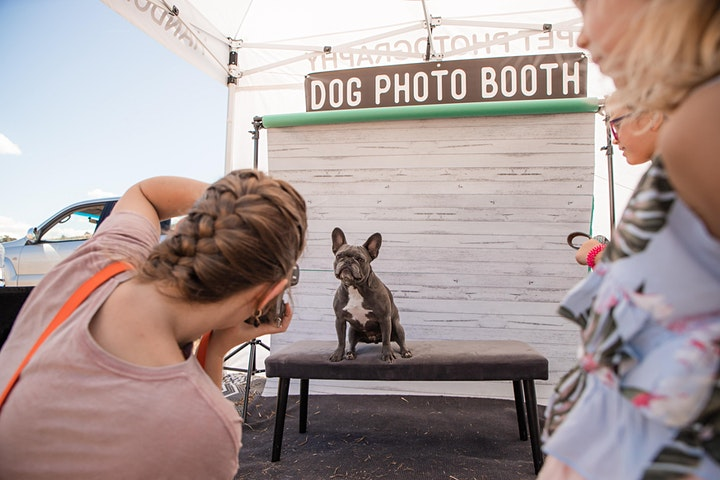 Long Bay Village Market & 1st Birthday Doggy Pawtraits image