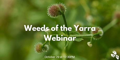 Weeds of the Yarra Webinar tickets
