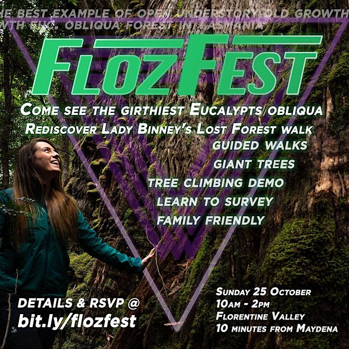 FlozFest image