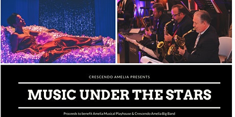 Music Under the Stars tickets