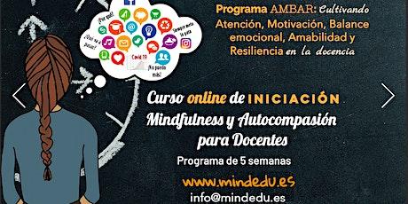 CURSO AMBAR:  INICIACIÓN AL MINDFULNESS Y AUTOCOMPASIÓN PARA DOCENTES boletos