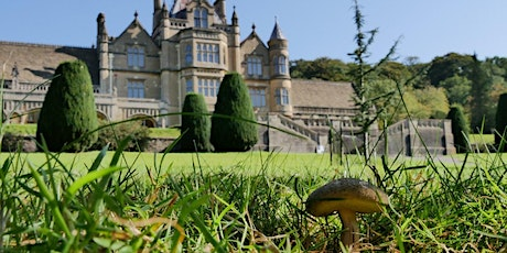 Timed entry to Tyntesfield (19 Oct - 25 Oct) tickets