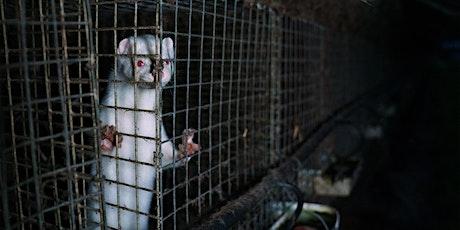 Fur Farming in Europe:  Addressing Animal Welfare & Public Health Concerns tickets