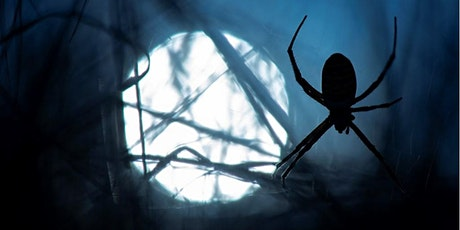 Halloween Frights in the Forest - Group 'Bubble' Ticket - Sold Out tickets