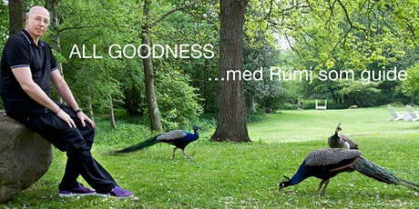 ALL GOODNESS -  SØNDAGSSAMLING ... med Rumi som guide tickets