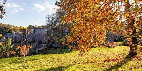 Timed entry to Cotehele (19 Oct - 25 Oct) tickets