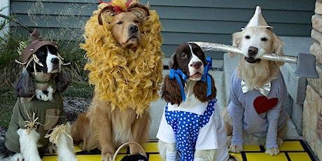 Halloween Pet Costume Contest tickets