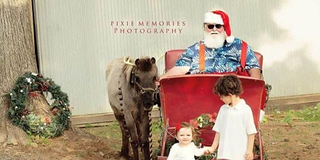 Afternoon with Santa and his reindeer pony Sparkle & Elsa! tickets