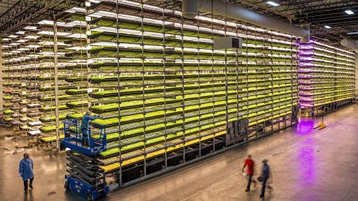 Vertical Farms in CEE - a way forward? image