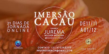 Imersão Cacau ingressos