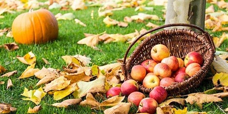 Apple & Pumpkin Picking @ Larriland Farms | Sign Up Oct. 12 - Oct. 22 tickets