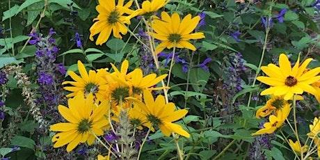 Fall Gardening Essentials tickets