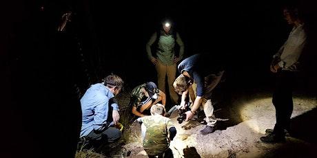 FrogID Week: Frog Spotting for Families in Muirhead (Darwin) tickets