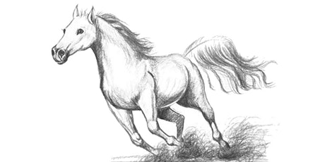 60min Animal Pencil Sketching Art Lesson - Horse @5PM (Ages 7+) tickets