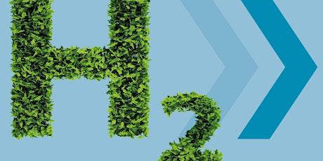 Workshop: Erneuerbares Kerosin. Chance für den nachhaltigen Luftverkehr? Tickets