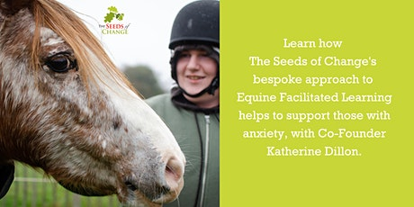 1 Day Workshop: How Horses Can Support Those With Severe Anxiety tickets