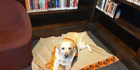 Reading Hour  with Jasmine the Story Dog tickets
