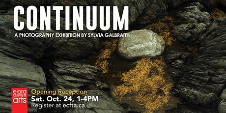 """Continuum"" Opening Reception with Sylvia Galbraith tickets"
