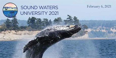 Virtual Sound Waters University 2021 tickets