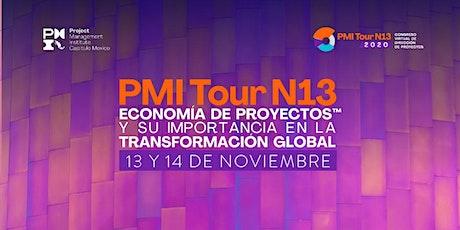 Congreso Virtual de Dirección de Proyectos PMITour N13 2020 boletos