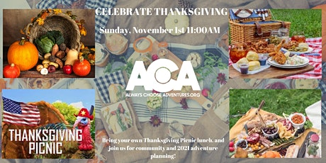 Bring Your Own Thanksgiving Picnic at Wash Park with ACA tickets