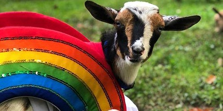 Goat Yoga Halloween Costume Party at  Bear Chase Brewing Company tickets