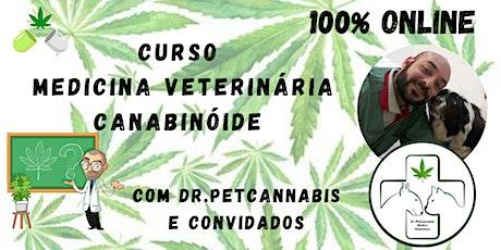 CURSO MEDICINA VETERINÁRIA CANABINOIDE entradas