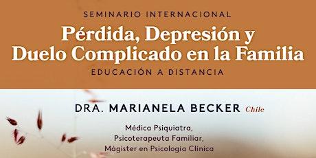 Seminario Pérdida, Depresión y Duelo Complicado en la Familia entradas