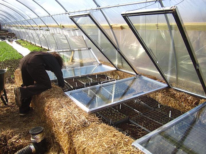 Winter Farming (Tips) image