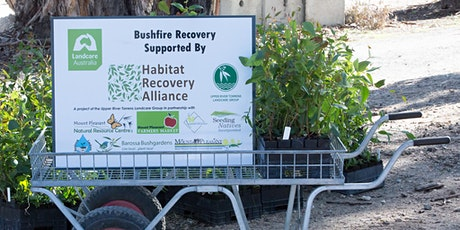 Habitat Recovery Alliance Mt Pleasant Nursery Workshop tickets