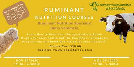 Ruminant Nutrition Courses tickets