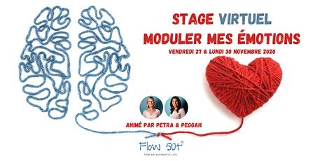 Moduler mes émotions - Eclipse - Stage Virtuel billets