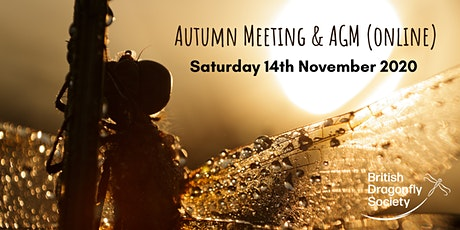 British Dragonfly Society Autumn Meeting and AGM (online) tickets