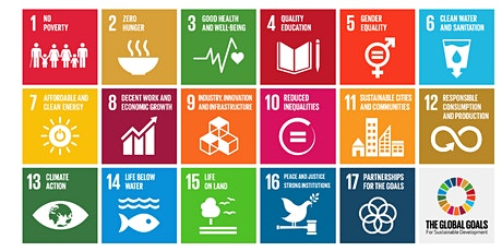 Introduction to the UN Sustainable Development Goals for Business tickets