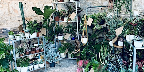 Nook @ Roam Brewery - Plant Market & Houseplant Clinic tickets