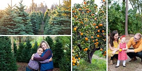 Orange Grove Family Photo Mini Sessions tickets