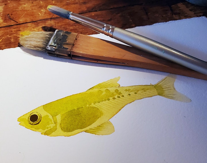 Watercolour Techniques with Kailey Lang image