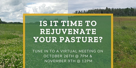 Is It Time to Rejuvenate Your Pasture?