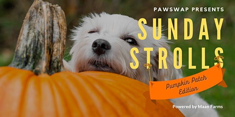 SOLD OUT: PawSwap Presents Sunday Strolls: Pumpkin Patch Ed. tickets