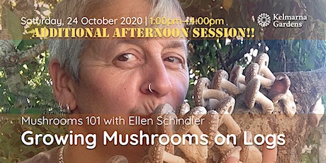 Mushrooms 101 - Growing Mushrooms on Logs (PM Session) tickets