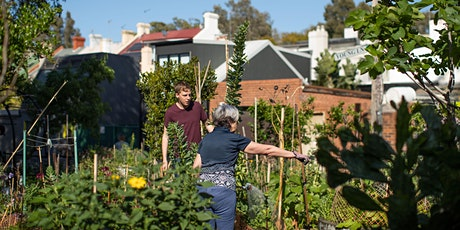 Community Gardens Policy Review - Online Workshop 1 (Evening  Session) tickets