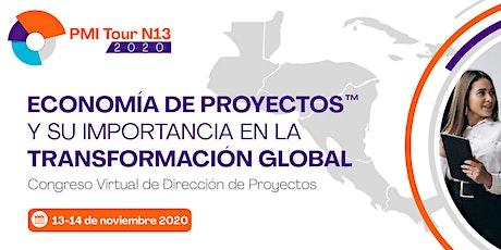 Congreso Virtual de Dirección de Proyectos PMITour N13 2020 entradas